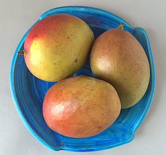 Ripe mangoes on a porcelain plate by James Makins
