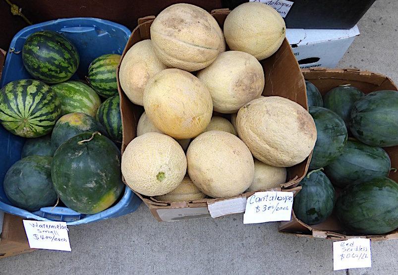Amantai Melons