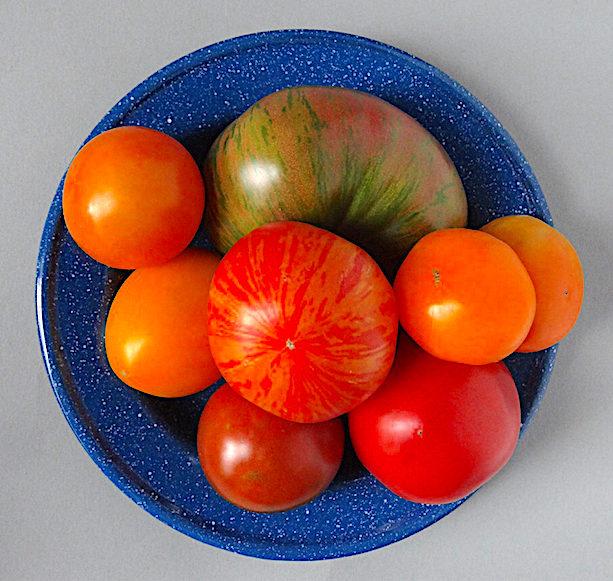 Ripe farmer's market tomatoes
